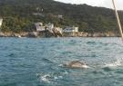 reto-acapulco-7-mile-mark